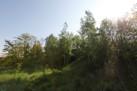 idealni_prostredi/zelen_rezidence_3D4.JPG